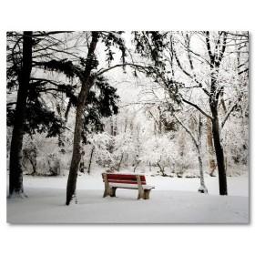 Αφίσα (μαύρο, λευκό, άσπρο, χιόνι)
